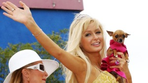 Her is Paris Hilton. The worlds worst role model, showing off her purse dog